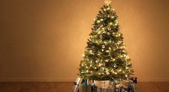 Weihnachtsbaumkauf-online-teaser